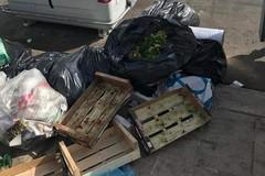 I rifiuti in largo Adua