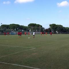 SSC Bari, allenamento sul campo dell'antistadio