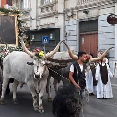 Il corteo di Sant'Antonio