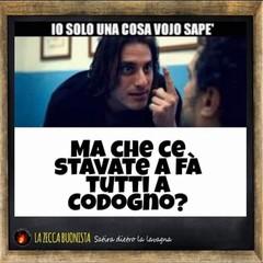 meme sul coronavirus
