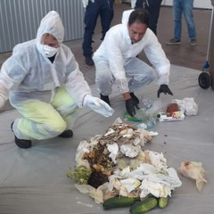petruzzelli chiarisce modalità conferimento organico