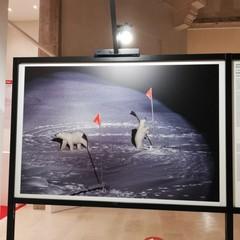 La mostra World press photo 2020 al Margherita