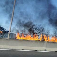 incendio statale