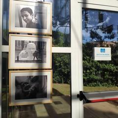 Le foto della mostra