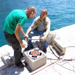 manuenzione stazione mar piccolo
