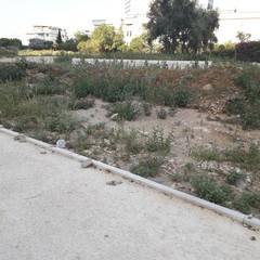 Parco Tridente, cantiere fermo da fine luglio