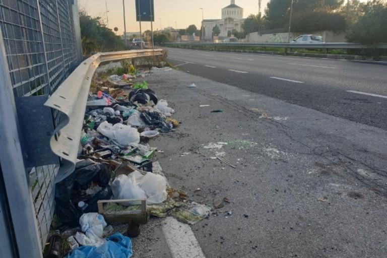 I rifiuti in via Tatarella