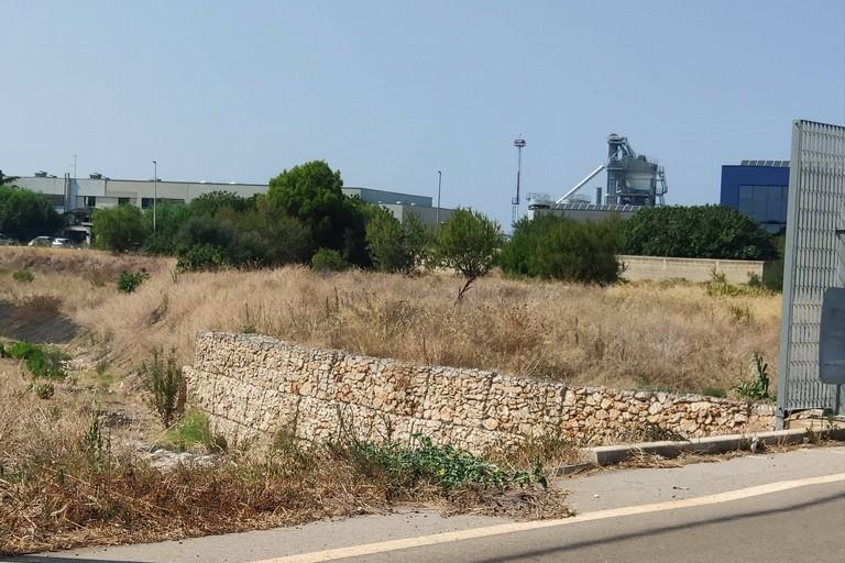 Il parco urbano della zona industriale. <span>Foto Elga Montani</span>