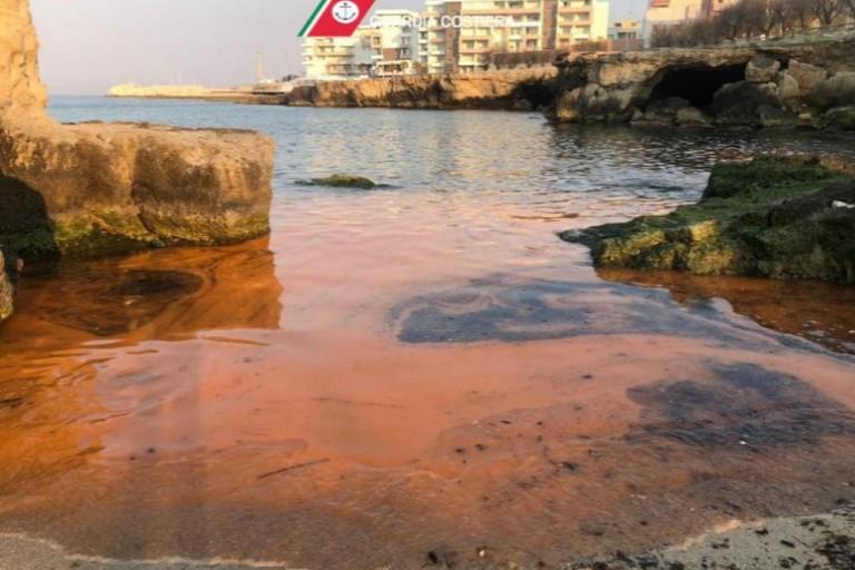 Alga rossa a Bari