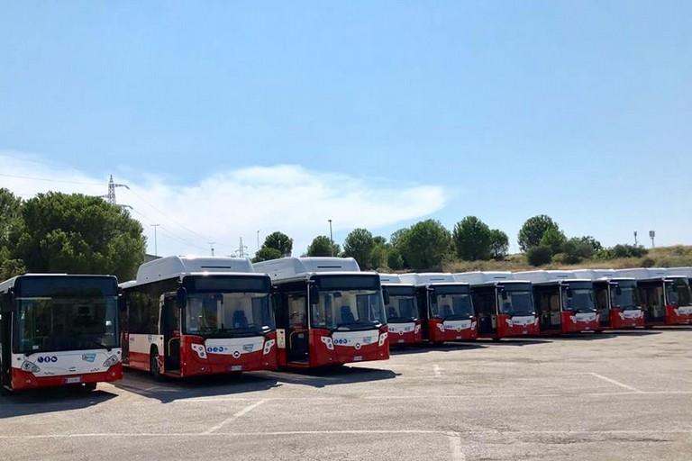 Alcuni nuovi autobus