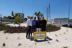 Bari, completata la rotatoria di via Caldarola adottata da Coldiretti