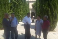 Cimitero monumentale di Bari, fra agosto e ottobre sfalcio degli alberi malati e pulizia generale