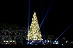 Natale a Bari, s'illuminano l'albero e il Christmas garden in piazza Ferrarese