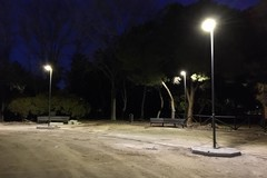 Nuova illuminazione e telecamere nella pineta San Francesco, riparte il cantiere