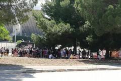 Cresce l'attesa per Ligabue a Bari, già lunghe code di fan al San Nicola