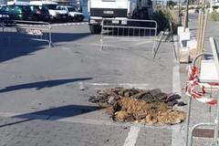 Bari, sul Waterfront installate le prime telecamere