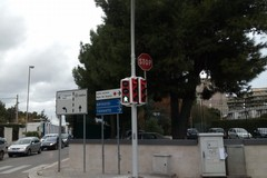 Bari, semafori biancorossi: ecco dove saranno posizionati i prossimi
