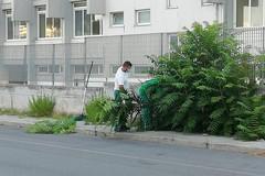Amiu, via le erbacce dai marciapiedi delle scuole di Bari