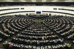 Europee, i commenti politici dei vincitori e dei perdenti pugliesi