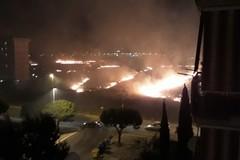 Bari brucia, incendio a Japigia le fiamme lambiscono la tangenziale