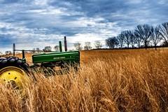 Bari, ecco l'agricoltura del futuro: una impresa su quattro è gestita da donne