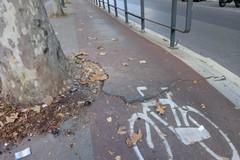 Bari, pista di viale della Repubblica ridotta ad un colabrodo: ciclisti a rischio