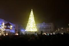 Bari dà il via alle feste con l'accensione dell'albero di Natale