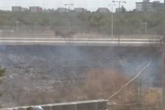 Incendio ai piedi della linea ferroviaria a Santo Spirito