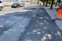 Asfalto danneggiato dalle radici dei pini in viale delle Regioni, partito cantiere di ripristino