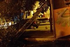 Maltempo su Bari, il vento abbatte un lampione in piazza Umberto