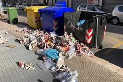 Vandali in azione a Carrassi, devastati i cassonetti di via Adige