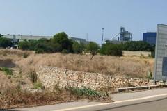 Zona industriale, il parco urbano apre grazie ad Agesci Bari