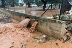 Danni da maltempo, il consiglio regionale della Puglia approva la richiesta di calamità