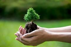 """""""Caro albero...ti pianto!"""", insieme per rendere più bello il parco di Lama Balice"""