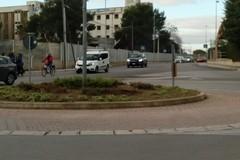 A Carbonara ci riprovano: dopo i due furti sarà piantato un nuovo albero in via Vaccarella