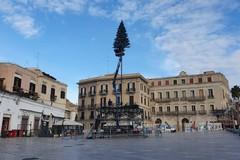 Bari si prepara al Natale, in piazza Ferrarese arriva il grande albero