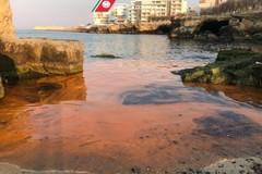 Un'alga tinge di rosso il mare di Bari, Arpa: «Nessun pericolo per la salute»
