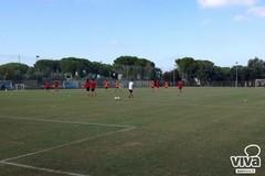 Verso SSC Bari-ASD Turris, doppia seduta di allenamento per i biancorossi. Tutti a disposizione