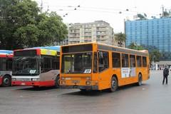 Bari raccoglie l'appello di Fridays for future, domani viaggi gratis sui bus Amtab