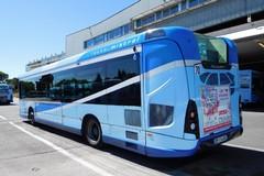 Amtab, oltre ai 54 nuovi autobus ne arriveranno altri sette