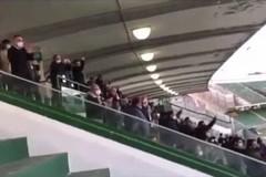 Troppi spettatori in tribuna ad Avellino, la SSC Bari: «Nessun esposto presentato»