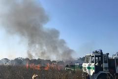 Bari, ormai si conta un incendio al giorno