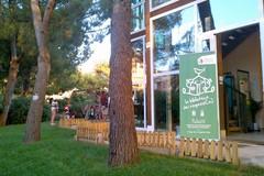 Weekend a Bari, tutti gli appuntamenti per grandi e piccini