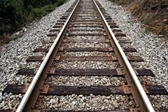 Treno lumaca sulla tratta Bari centrale-Fesca