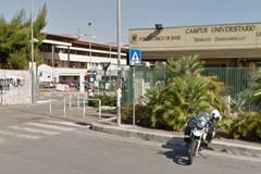 Università di Bari, visite gratuite all'orto botanico e al museo di scienze della terra