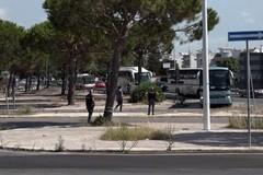 Cara Bari-Palese, partiti 159 migranti. Non si fermano le polemiche politiche