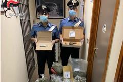 Bari, deposito di droga scovato dai carabinieri a Japigia