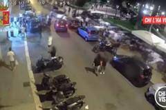 """Aggrediti e rapinati a Bari perché gay, lo speciale di """"Chi l'ha visto"""""""