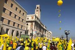 Migliaia di cinghiali assediano le campagne: protesta degli agricoltori a Bari