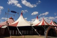 Monopoli (Bari), trapezisti, giocolieri e animali del circo bloccati per la pandemia